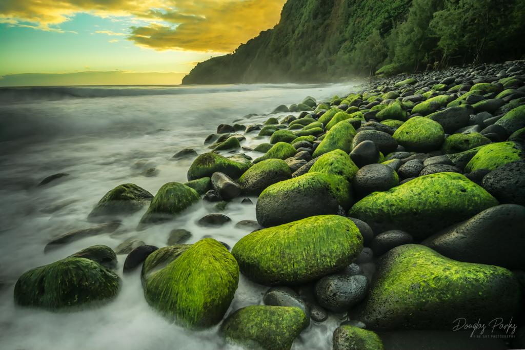 Dawn at the Waipio.jpg
