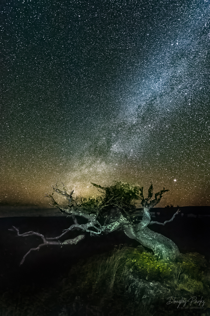 Mauna Kea Starfield.jpg
