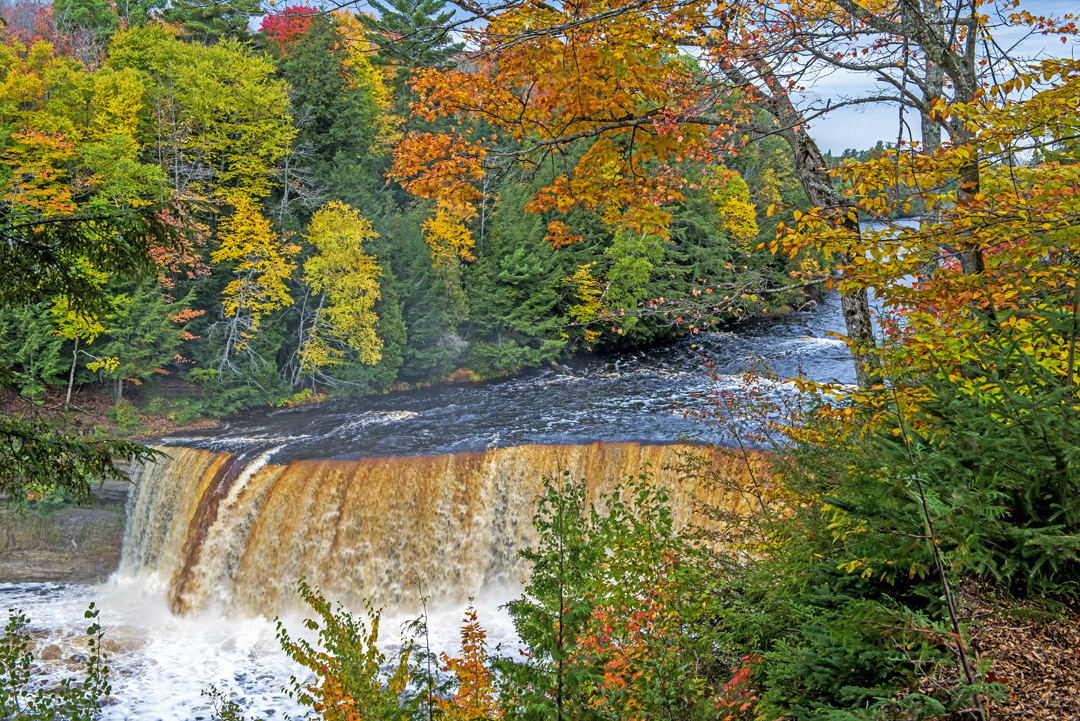 Tahquamenon Falls  (1 of 1).jpg